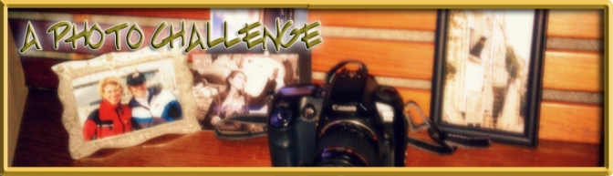 Weekly Photo Challenge: Background or Foreground – Who Knows?