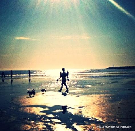 Dog beach - San Diego, CA