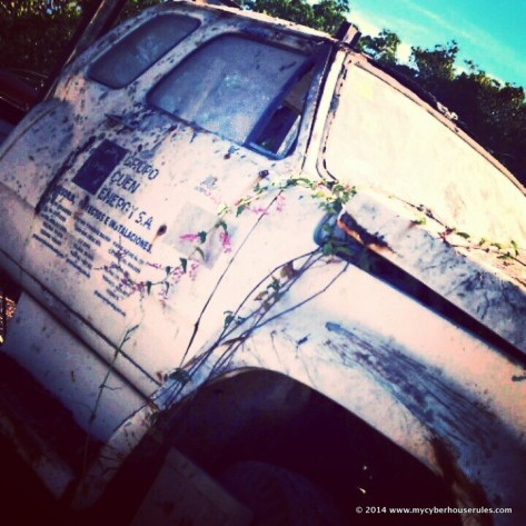 truck overgrown with flowers
