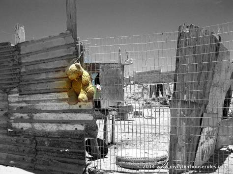 hanging teddy bear